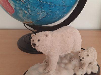 Урок Арктики